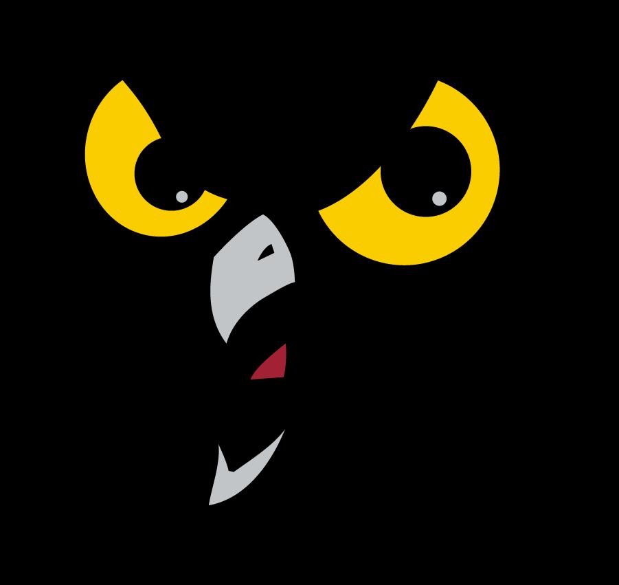 Temple Owls Logo Alternate Logo (1996-2020) - Owl face in black box. SportsLogos.Net