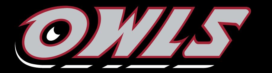 Temple Owls Logo Wordmark Logo (1996-2014) - Slanted OWLS wordmark in silver. SportsLogos.Net