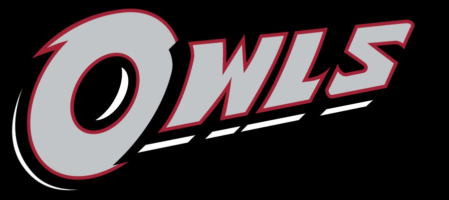 Temple Owls Logo Wordmark Logo (2014-2020) - Slanted OWLS wordmark in silver. SportsLogos.Net