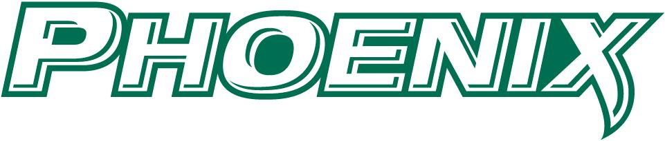 Wisconsin-Green Bay Phoenix Logo Wordmark Logo (2011-Pres) -  SportsLogos.Net