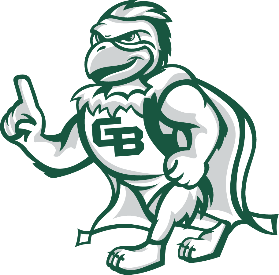 Wisconsin-Green Bay Phoenix Logo Mascot Logo (2020-Pres) - Phlash, the mascot of the Wisconsin-Green Bay Phoenix. This depiction created by Katie Stephenson, a graphics design assistant for the university's Office of Marketing and University Communication. SportsLogos.Net