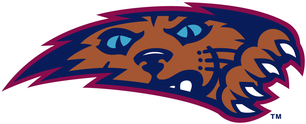 Villanova Wildcats Logo Alternate Logo (1996-2003) - Wildcat clawing his way through background SportsLogos.Net