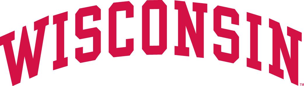 Wisconsin Badgers Logo Wordmark Logo (1991-2003) -  SportsLogos.Net