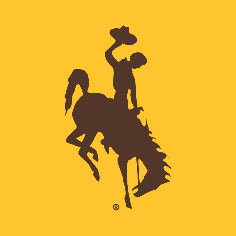 Wyoming Cowboys Logo Alternate Logo (2006-Pres) -  SportsLogos.Net
