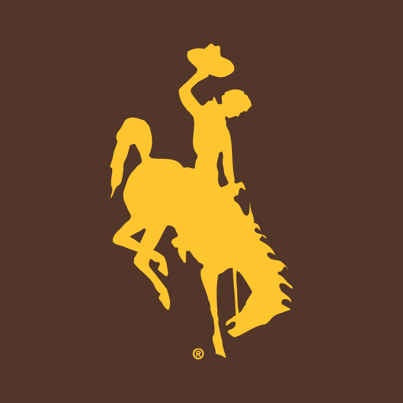 Wyoming Cowboys Logo Alternate Logo (2006-Pres) -  SportsLogos.Net