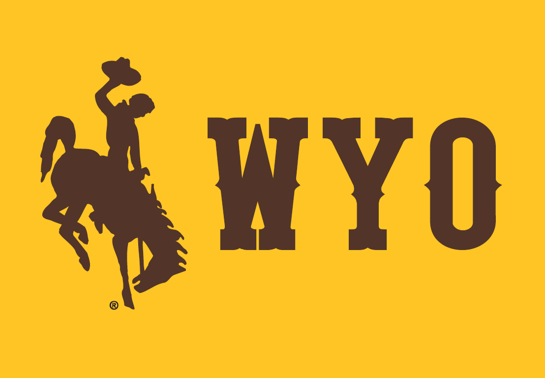 Wyoming Cowboys Alternate Logo - NCAA Division I (u-z ...