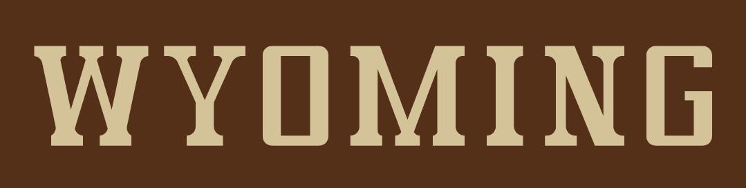 Wyoming Cowboys Logo Wordmark Logo (2006-2012) -  SportsLogos.Net