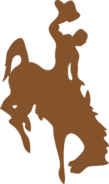 Wyoming Cowboys Logo Primary Logo (1965-2005) -  SportsLogos.Net