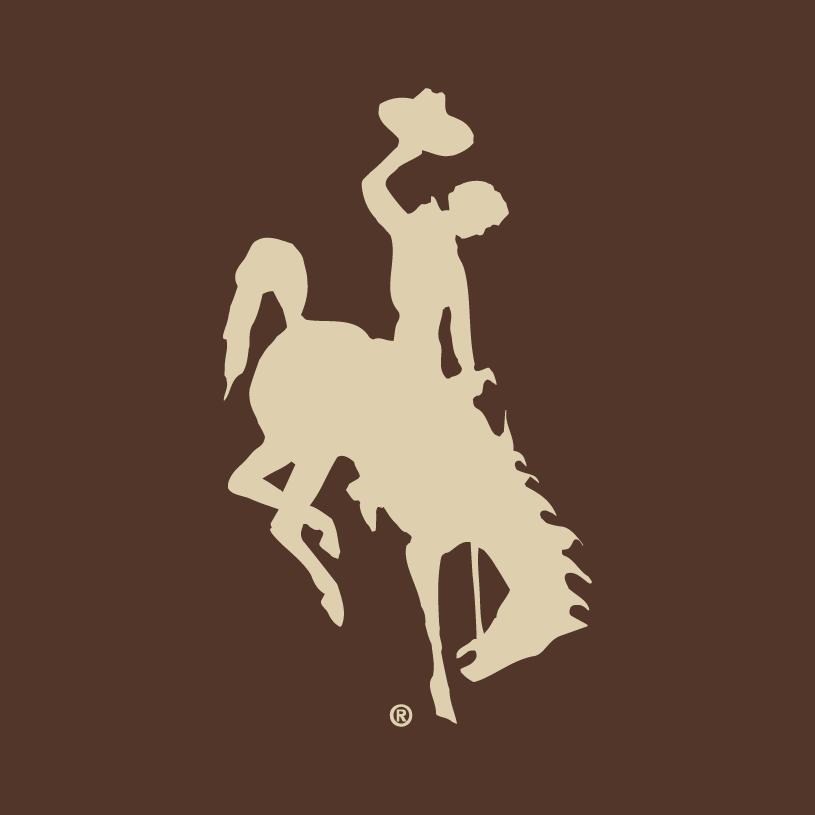 Wyoming Cowboys Logo Alternate Logo (2006-2012) -  SportsLogos.Net