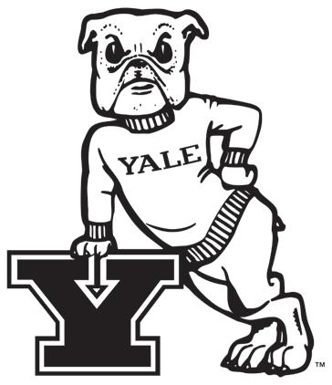 Yale Bulldogs Logo Primary Logo (1972-1997) - Bulldog with sweatshirt leaning against a blue Y SportsLogos.Net