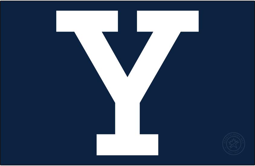 Yale Bulldogs Logo Alt on Dark Logo (1972-Pres) - Block Y in white on Yale Blue background. SportsLogos.Net