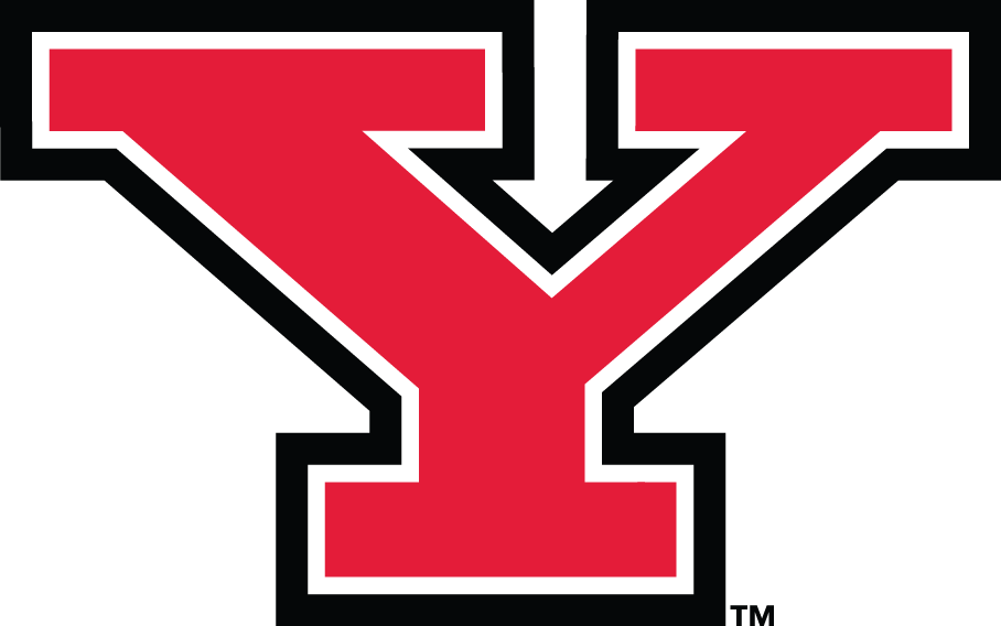 Youngstown State Penguins Logo Primary Logo (2006-Pres) -  SportsLogos.Net