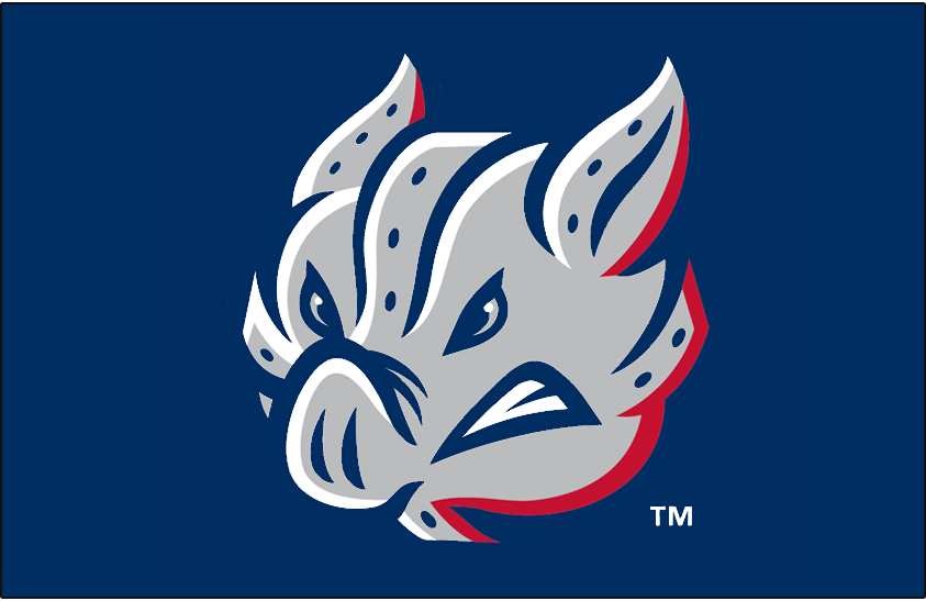 Lehigh Valley IronPigs Logo Cap Logo (2014-Pres) - The IronPig mascot shown at more of a head-on angle than usual on navy blue. Worn on the Lehigh Valley IronPigs batting practice caps beginning in 2014. SportsLogos.Net