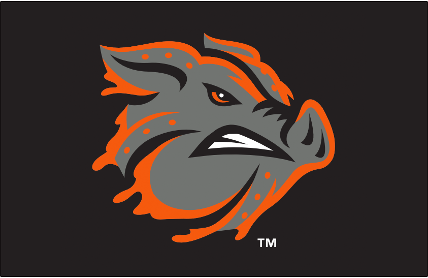 Lehigh Valley IronPigs Logo Cap Logo (2014-Pres) - A silver pigs head with orange melted liquid metal flowing from it on black. Worn on the Lehigh Valley IronPigs Friday home alternate caps beginning in 2014 SportsLogos.Net