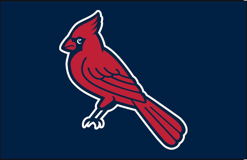 Memphis Redbirds Logo Batting Practice Logo (1999-2014) - (Alt) A cardinal perched with a white outline on blue SportsLogos.Net