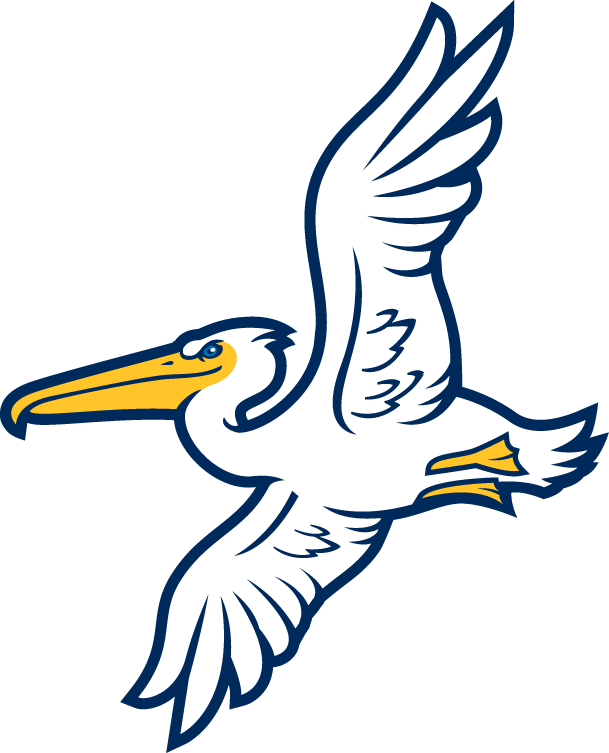 Myrtle Beach Pelicans Logo Alternate Logo (2007-Pres) -  SportsLogos.Net