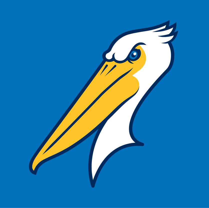 Myrtle Beach Pelicans Logo Cap Logo (2007-Pres) -  SportsLogos.Net
