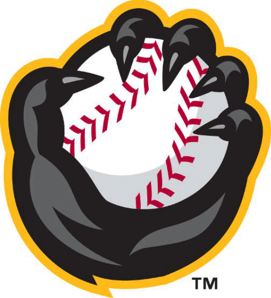 Quad Cities River Bandits Logo Alternate Logo (2014-Pres) - A grey raccoon hand clutching a baseball outlined in yellow SportsLogos.Net