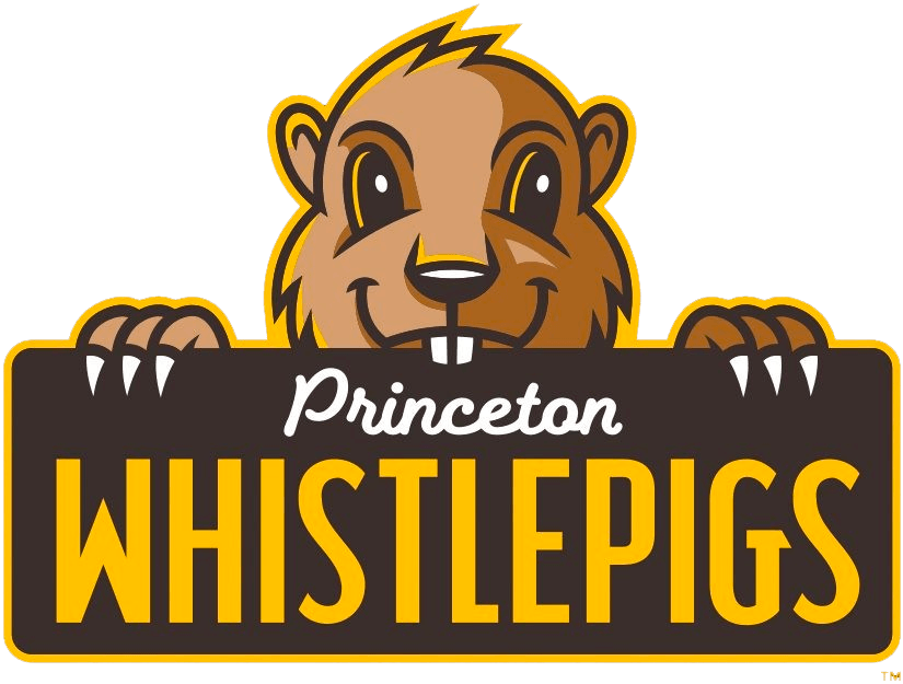 Princeton WhistlePigs Logo Primary Logo (2021-Pres) - The Princeton WhistlePigs features a brown whistle pig (a regional name for groundhog) peeking up from behind a dark brown rectangle showing the team name - scripted across in white and yellow SportsLogos.Net