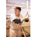 Baltimore Orioles (1960)