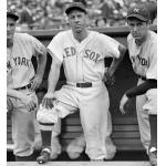 Boston Red Sox (1934) Bill Werber wearing the Boston Red Sox home uniform during the 1934 season