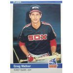 Chicago White Sox (1983)