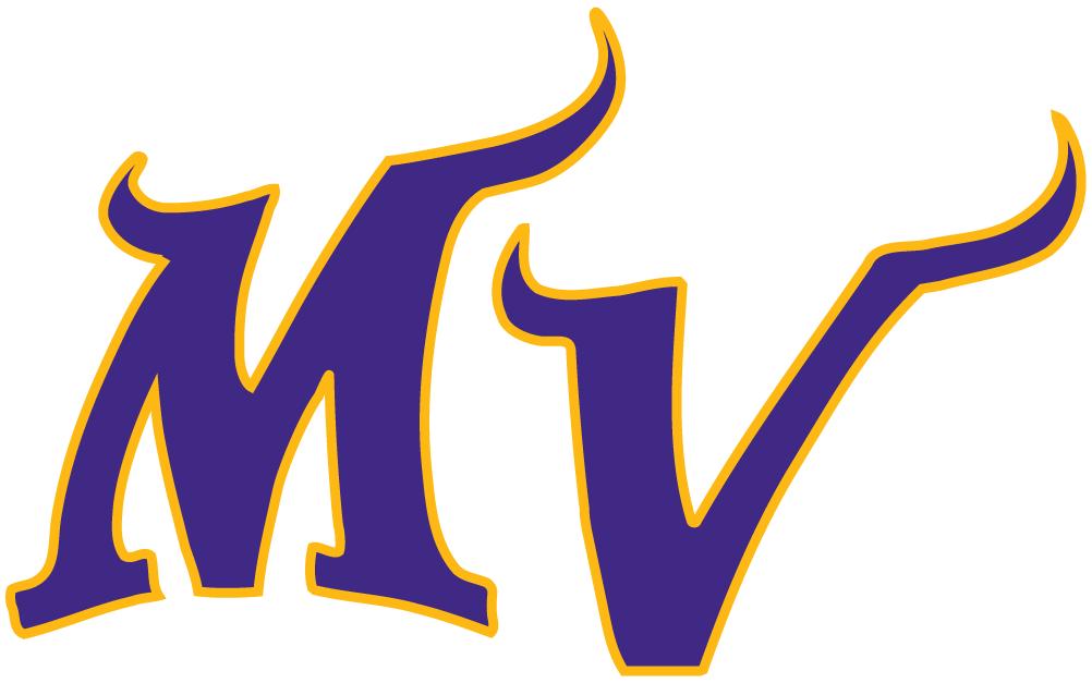 Minnesota Vikings Logo Alternate Logo (2004-Pres) -  SportsLogos.Net