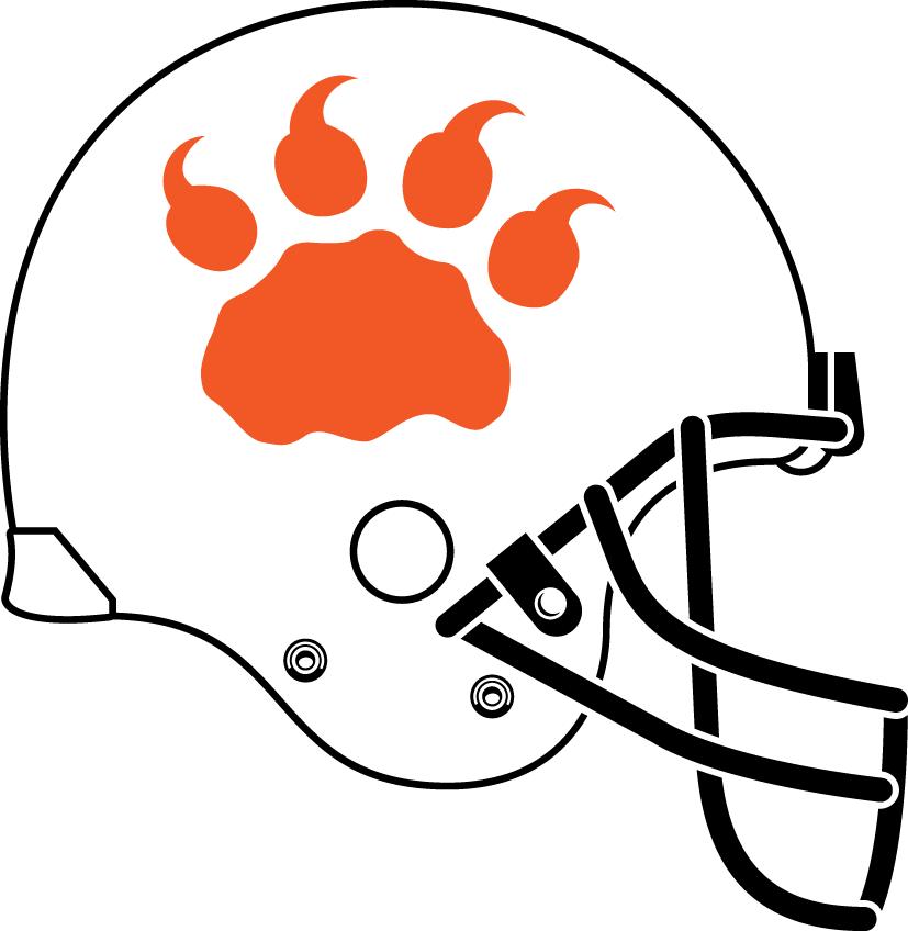 BC Lions Helmet Helmet (2012) - Alternate unifrom helmet SportsLogos.Net