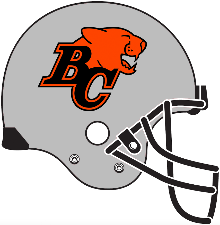 BC Lions Helmet Helmet (1996-2004) - Silver helmet with black facemask SportsLogos.Net