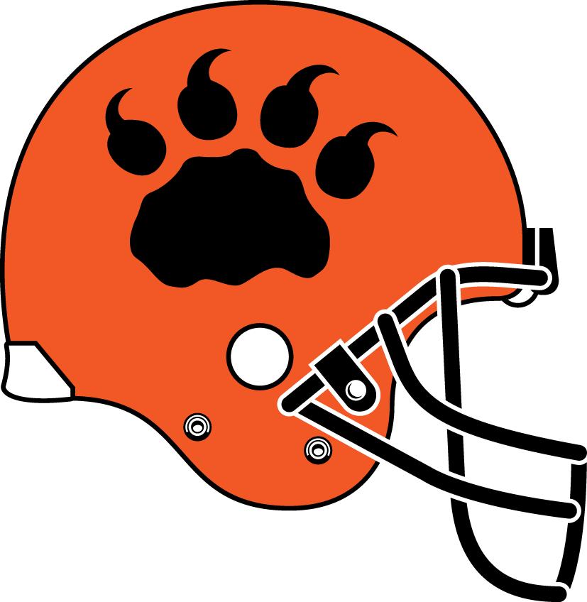BC Lions Helmet Helmet (2006-2008) - Alternate unifrom helmet SportsLogos.Net