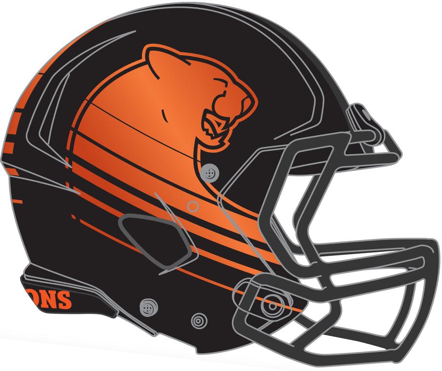 BC Lions Helmet Helmet (2016-2018) - Home helmet SportsLogos.Net
