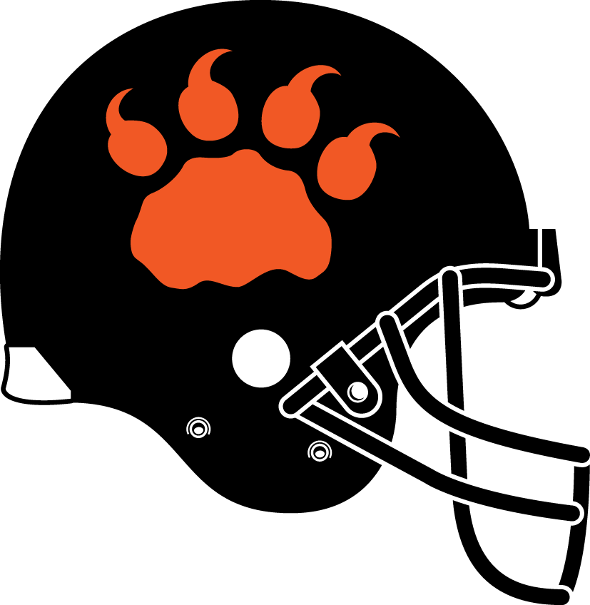 BC Lions Helmet Helmet (2013-2017) - Alternate and signature uniform helmet SportsLogos.Net