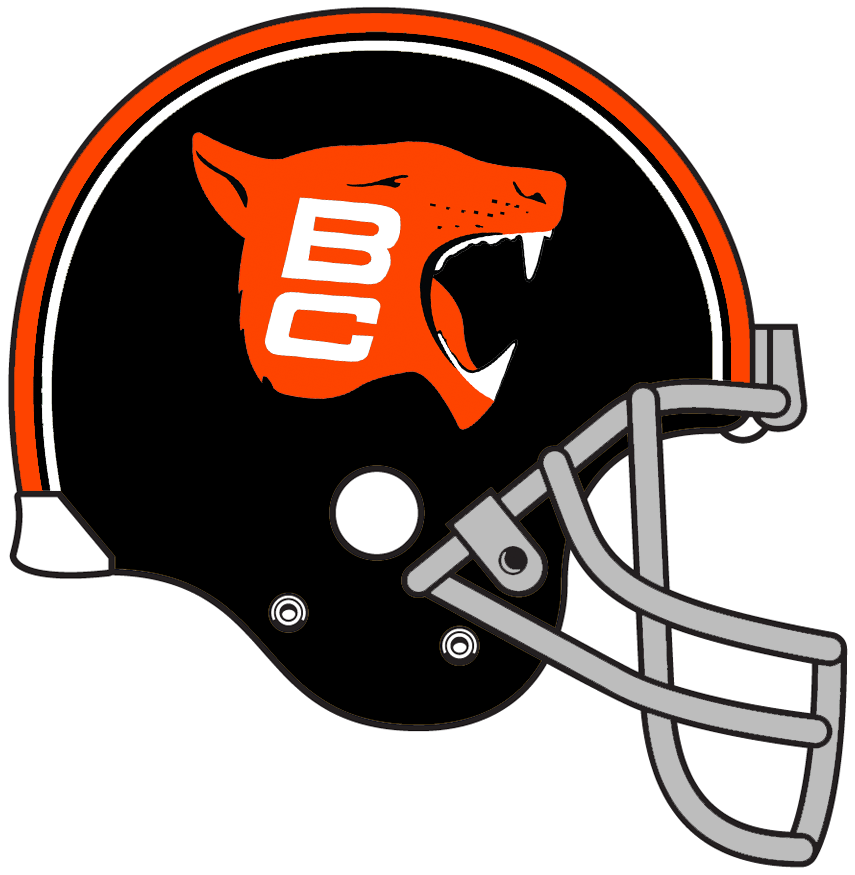 BC Lions Helmet Helmet (1972-1975) -  SportsLogos.Net