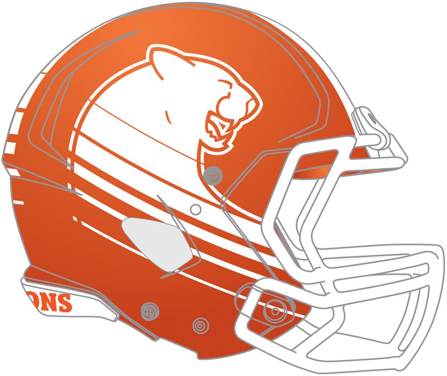 BC Lions Helmet Helmet (2016-2018) - Road helmet SportsLogos.Net