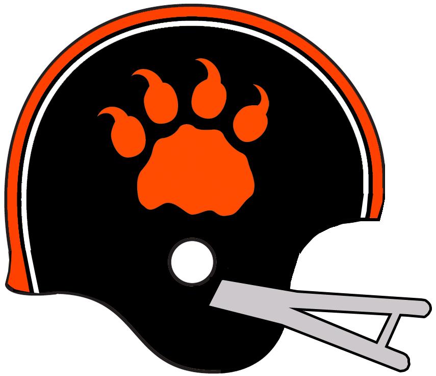 BC Lions Helmet Helmet (1962-1966) -  SportsLogos.Net