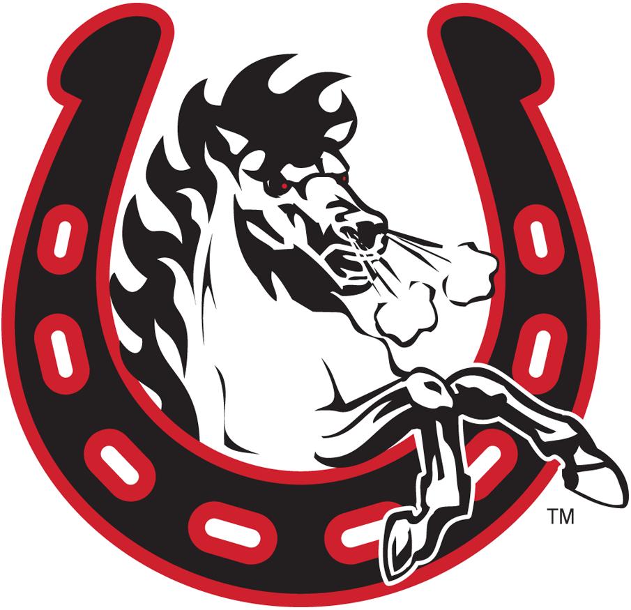 Calgary Stampeders Alternate Logo Canadian Football