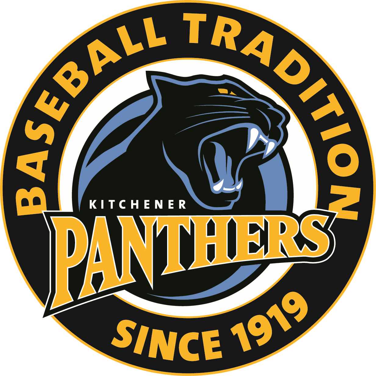 Kitchener Panthers Logo Primary Logo (2010-Pres) -  SportsLogos.Net