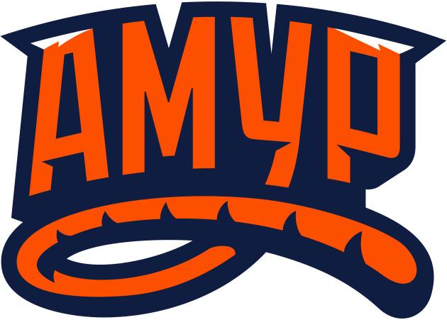 Amur Khabarovsk Logo Wordmark Logo (2014/15-Pres) -  SportsLogos.Net