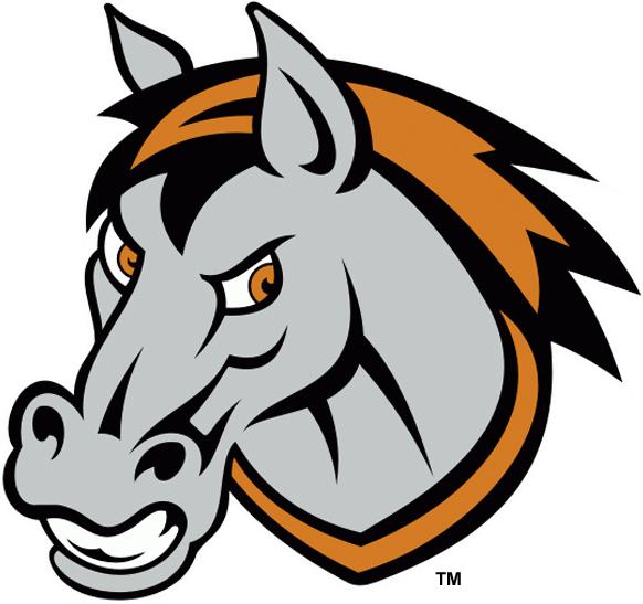Missouri Mavericks Logo Secondary Logo (2009/10-2013/14) -  SportsLogos.Net