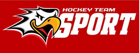 Vaasan Sport Logo Alternate Logo (2014-Pres) -  SportsLogos.Net