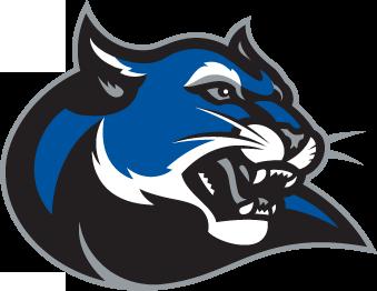 Culver-Stockton College Shows a New Logo