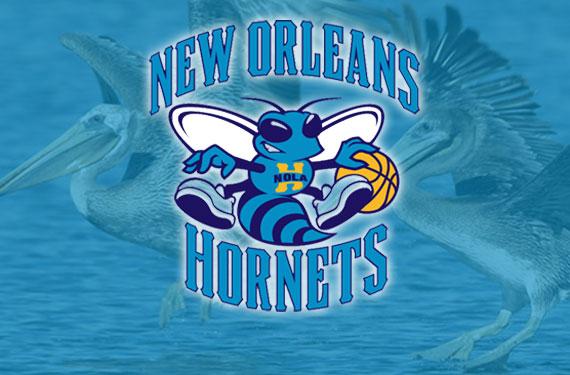 Hornets to Unveil New Name, Logos Tomorrow