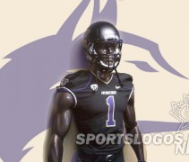 Washington Huskies Nike New Helmets