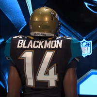Jacksonville Jaguars 2013 New Uniform Back