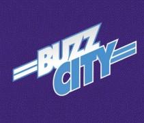 Buzz City Hornets