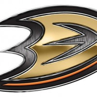 Anaheim Ducks Chrome