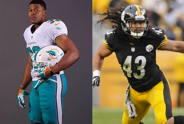 Dolphins Steelers Dec 8 2013