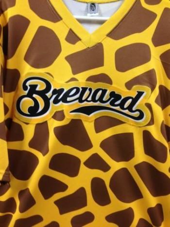 Brevard-Brewers