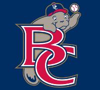 Brevard_County_Manatees_Cap_Logo