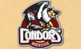 condors-header2